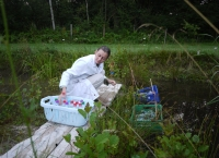 Eva collecting samples 2012